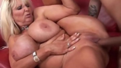Busty amateur babe banged by a vaillant fucker